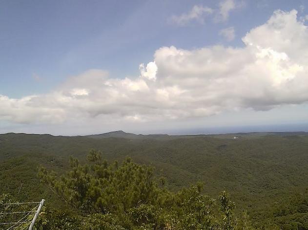 やんばるライブカメラと雨雲レーダー/沖縄県国頭村