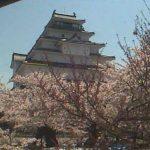鶴ヶ城ライブカメラ