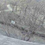 中山池自然公園ライブカメラ