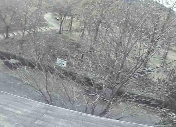 中山池自然公園ライブカメラと雨雲レーダー/愛媛県宇和島市