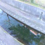 八千代1号幹線(高津川)の水位ライブカメラ(3ヶ所)