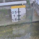比謝川と泡瀬の河口ライブカメラ(3ヶ所)
