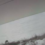 野付半島内海ライブカメラ
