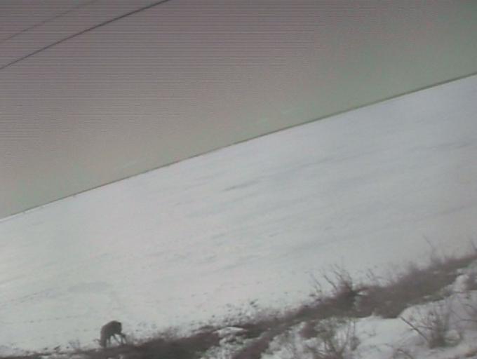 北海道別海町 野付半島内海ライブカメラと雨雲レーダー