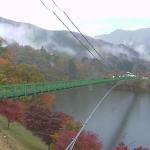もみじ谷大吊橋ライブカメラ