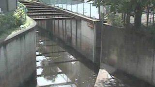 石神井川 ライブカメラ(芝久保)と雨雲レーダー/東京都西東京市