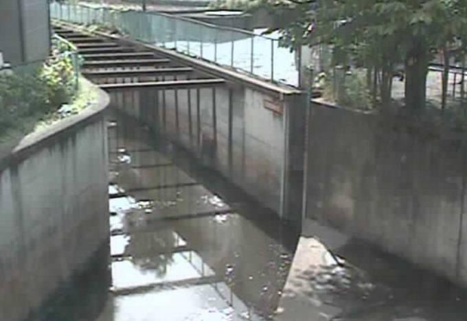 東京都西東京市 石神井川(芝久保)の水位ライブカメラと雨雲レーダー