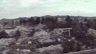 鶴岡公園がみえるライブカメラと雨雲レーダー/山形県鶴岡市
