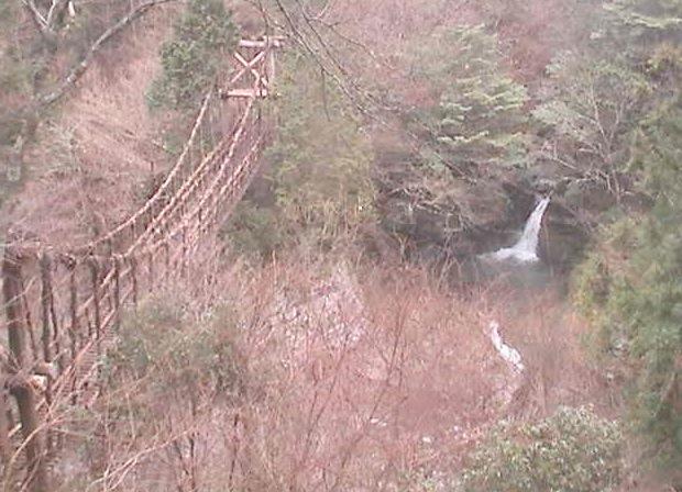 奥祖谷二重かずら橋ライブカメラと雨雲レーダー/徳島県三好市