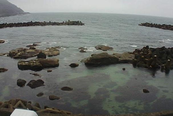 加茂水族館周辺の海ライブカメラ