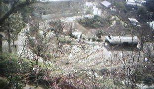 千光寺山頂周辺の桜ライブカメラ(期間限定)と雨雲レーダー/広島県尾道市