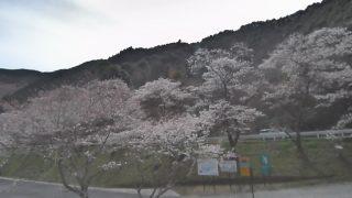 汗の原親水公園の桜ライブカメラと雨雲レーダー/熊本県水上村