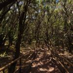 ガラホナイ国立公園の360度パノラマカメラ