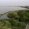 阿賀野川など松浜橋周辺ライブカメラ