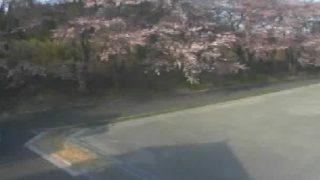 リバーライン(商工会裏桜並木)付近ライブカメラと雨雲レーダー/福島県浪江町