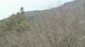 停止中:限定配信:東名高速道路 大井松田IC付近ライブカメラ(NHK)と雨雲レーダー/神奈川県松田町