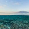 広大な珊瑚が美しいオーストラリア グレートバリアリーフの水中ストリートビュー