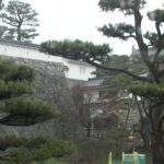 霞ヶ城公園ライブカメラ