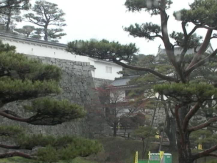 停止中:霞ヶ城公園ライブカメラと雨雲レーダー/福井県坂井市
