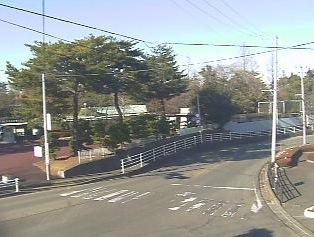 仙台市の路面情報が見れるライブカメラ
