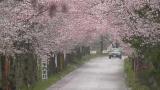 太平山遊覧道路ライブカメラと雨雲レーダー/栃木県栃木市