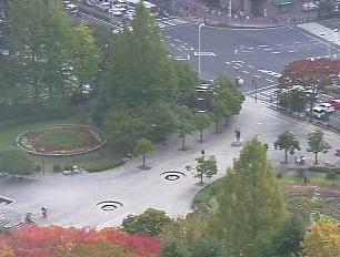 宮城県庁 南側ライブカメラ
