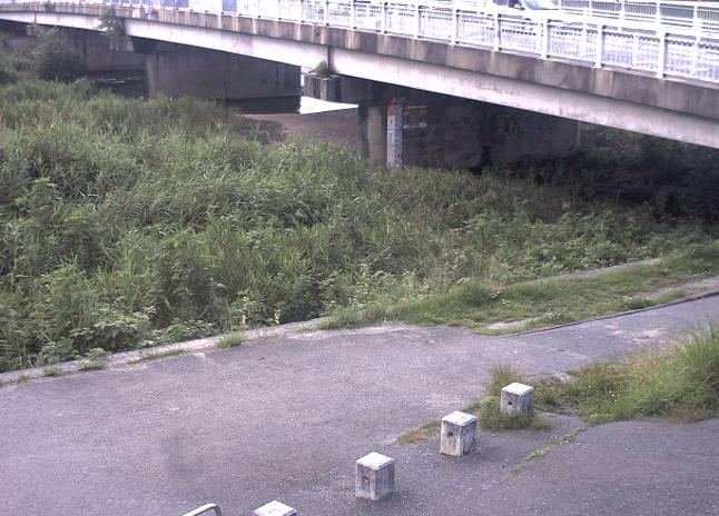 室見川・金屑川・樋井川・瑞梅寺川等ライブカメラ(7ヶ所)