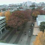 東京経済大学ライブカメラ