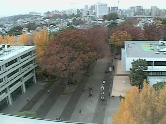 東京経済大学ライブカメラと雨雲レーダー/東京都国分寺市