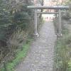 """太平山県立自然公園の""""あじさい坂""""ライブカメラ"""