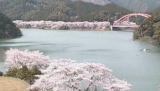 七川ダムライブカメラと雨雲レーダー/和歌山県古座川町