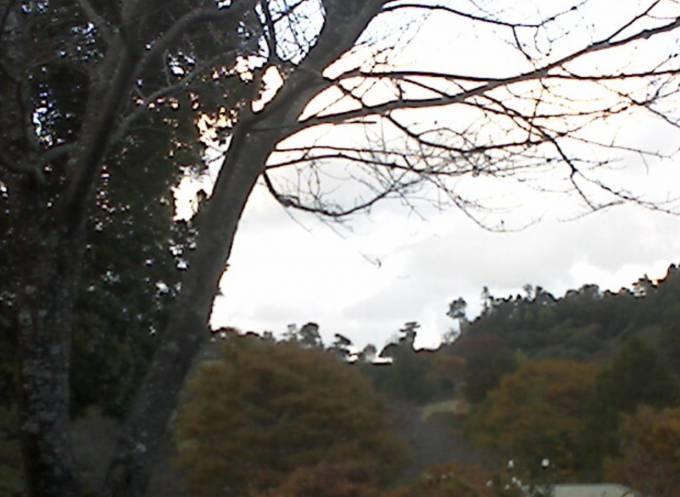 徳島県神山町 徳島県立神山森林公園イルローザの森ライブカメラと雨雲レーダー
