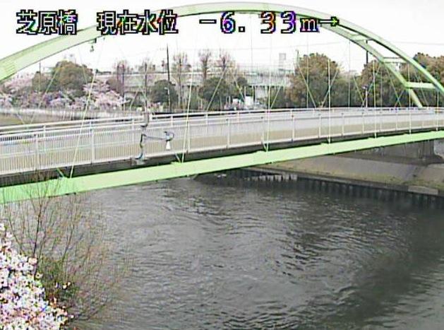 芝原橋(新河岸川)ライブカメラ