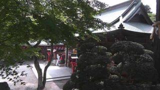 宮城県仙台市 愛宕神社の境内ライブカメラと雨雲レーダー