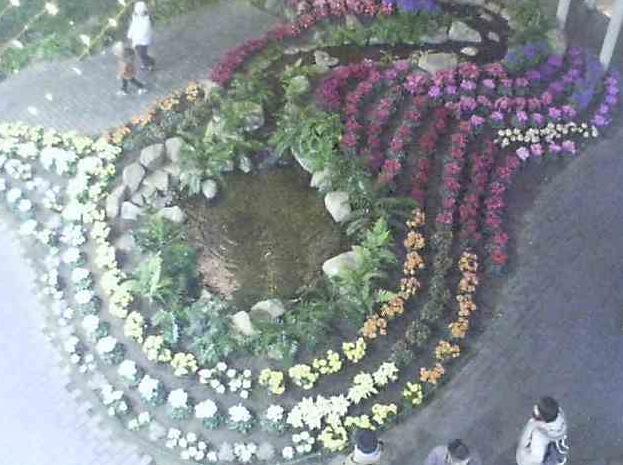 フローランテ宮崎のアトリウム・ガーデンライブカメラ