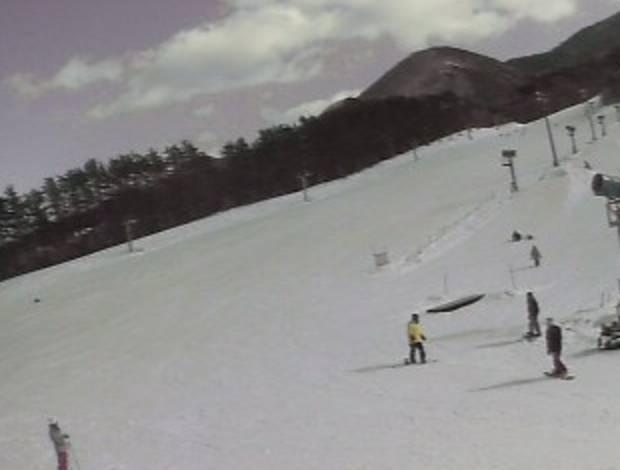 ひるぜんベアバレースキー場ライブカメラ(2ヶ所)