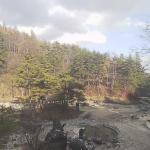 草津温泉・西の河原公園ライブカメラ