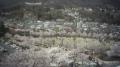 つつじが岡公園ライブカメラと雨雲レーダー/群馬県館林市