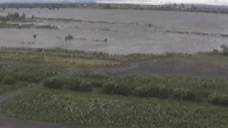 天竜川 ライブカメラと雨雲レーダー/静岡県浜松市