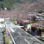 下北山スポーツ公園ライブカメラ