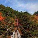 梅ヶ島の紅葉360度パノラマカメラ