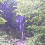 払沢の滝ライブカメラ