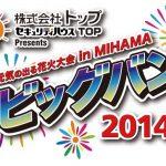 2014年8月16日 元気の出る花火大会 in MIHAMAライブカメラ