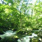 奥入瀬渓流・阿修羅の流れ360度パノラマカメラ