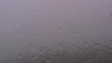 停止中:ウインドパーク久居榊原ライブカメラと雨雲レーダー/三重県津市