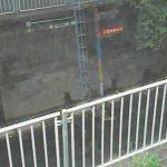 神田川(番屋橋)の水位ライブカメラ
