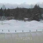 みちのく公園・わらすこ広場ライブカメラ
