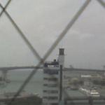 泊港ライブカメラ