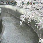 栗原橋(石神井川)ライブカメラ