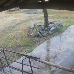 フェニックス自然動物園のラクダライブカメラ